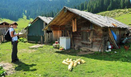 Aktivnosti na terenu u Crnoj Gori i Albaniji